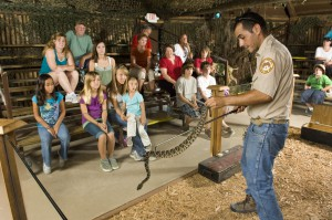 Snake Show in the Florida Everglades