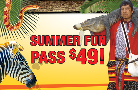Summer Fun Pass
