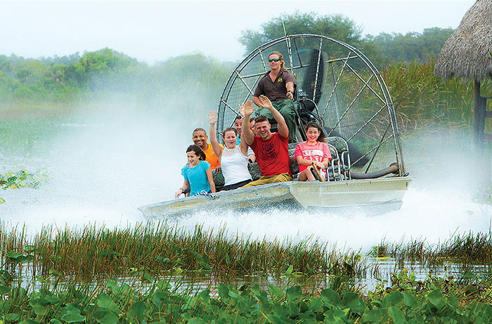 Everglades Activities for Kids